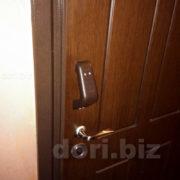 Входная квартирная дверь